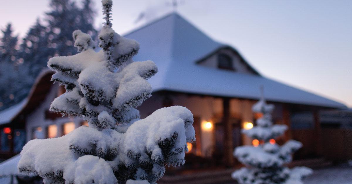Comment se porte votre toiture cet hiver