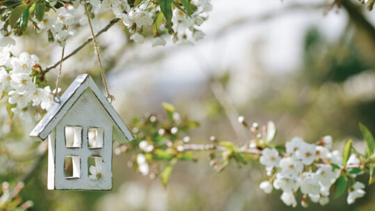 How is your home doing this spring?